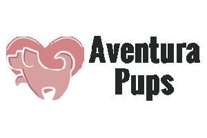 Aventura Pups