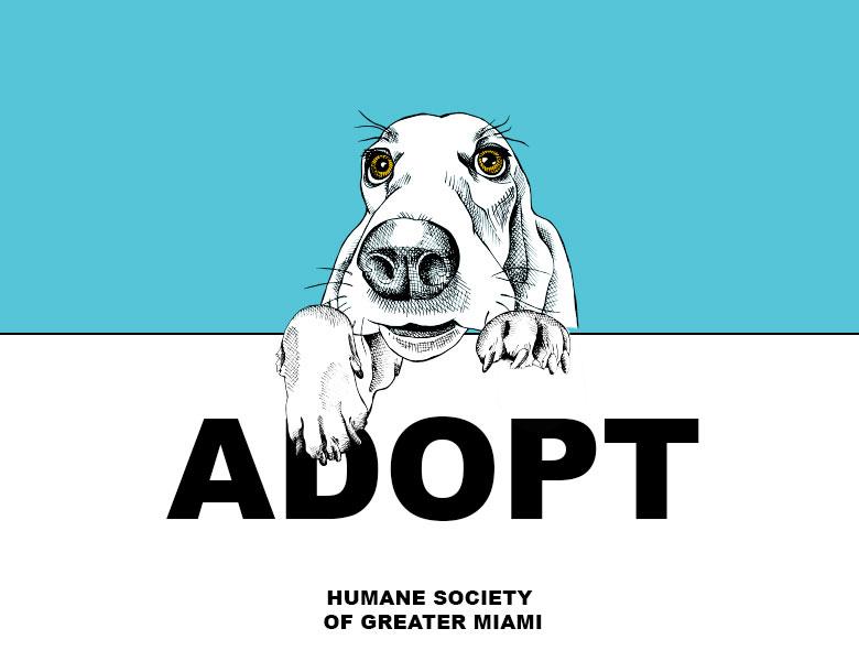 Adopt-a-Pet Program Aventura Mall Miami