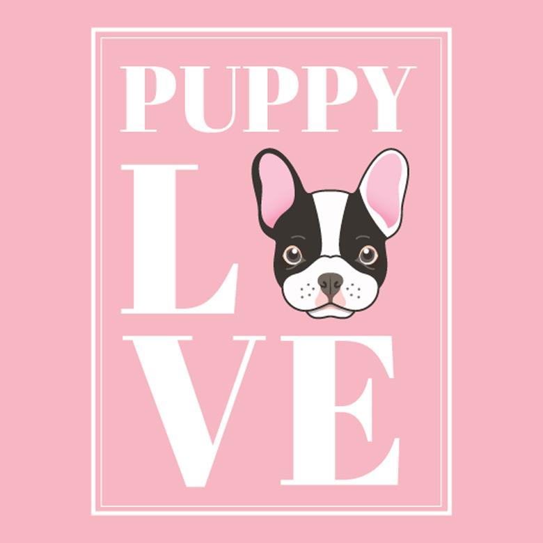 Puppy Love Best Shopping in Miami