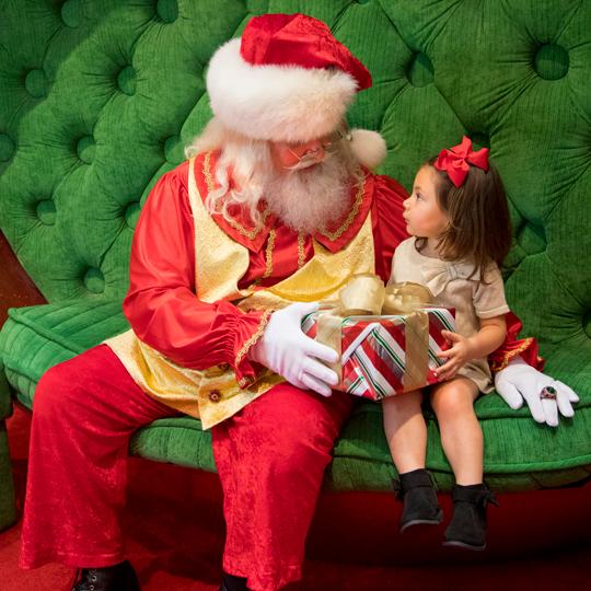 Capture Everlasting Photo Moments with Santa